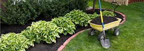Mulching, Seasonal Cleanups & Spade Edging